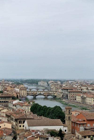 Bridges / Florence 2013