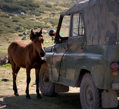 Horse and Car / Rila Mountain 2008