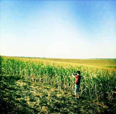 Cameraman in Corn Field / Dobrudzha 2011