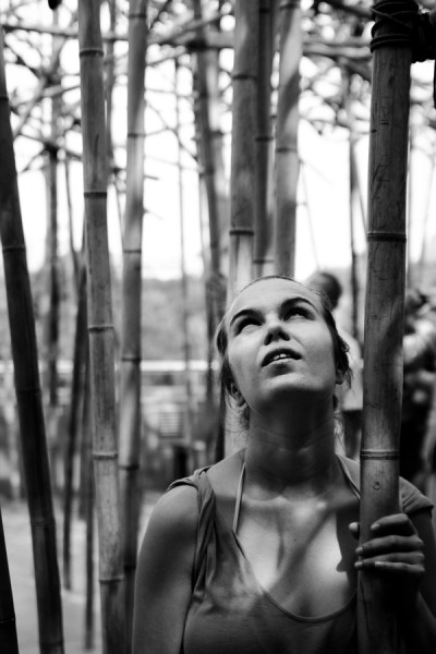 Among the Bamboo Shoots / New York 2010