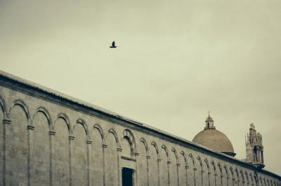 Flying Over / Pisa 2013