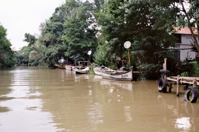 River Life / Kamchiya River 2013